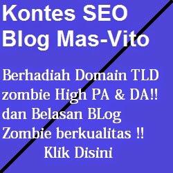 Kontes SEO Blog Mas-Vito v2
