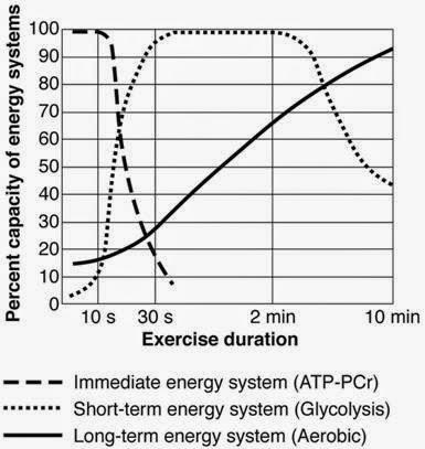 「身體能量系統」的圖片搜尋結果