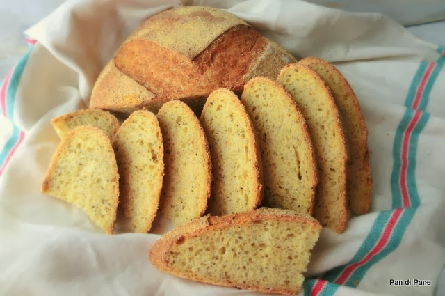 Pan di Pane: Ricetta Pane con Mais e Grano Saraceno, con Pasta Madre.