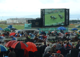 crowd watching the big screen at the Galway races on a wet day from under their umbrellas