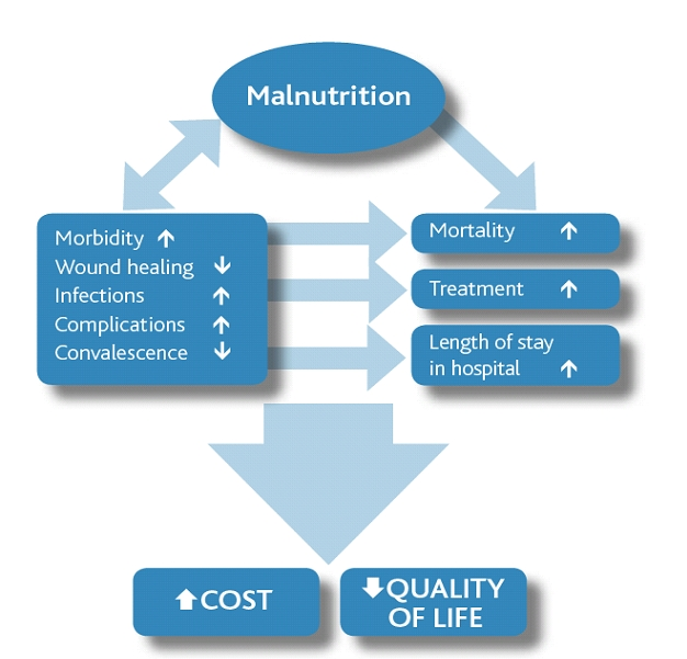 Immune Dysfunction as a Cause and Consequence of Malnutrition