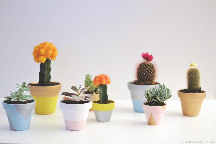 Painted Terracotta Pots DIY
