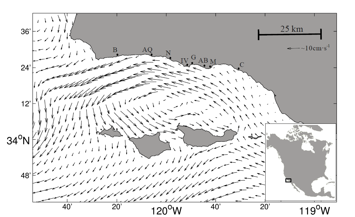 oceanographic transport is used in this project to model connectivity between giant kelp patches the results are contrasted with genetic differentiation