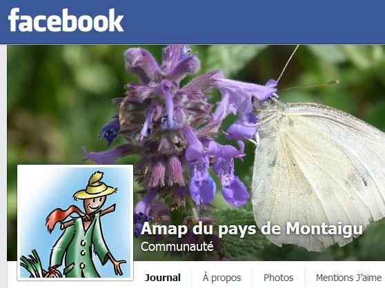 Le Facebook de l'AMAP