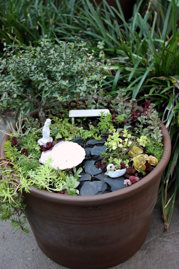 6 sorts of indoor gardening containers to replace plastic for Fairy garden box ideas