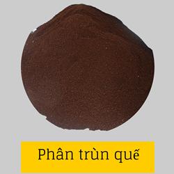 https://sites.google.com/site/hinhanhtqcc/phan-trun-que