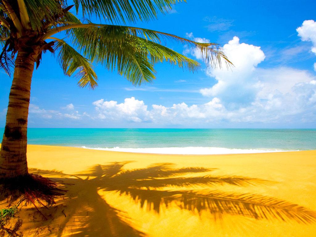 Gambar Pantai Pasir Putih Indah