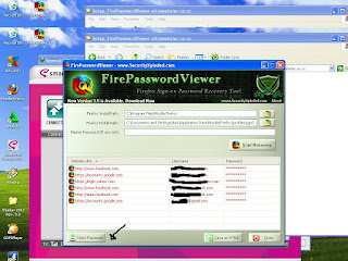 FirePasswordViewer