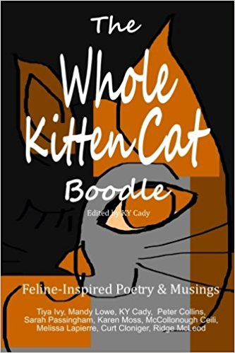 Poetry Compilation for the Feline-Inspired