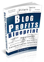 ebook blog profits blueprint yaro starak