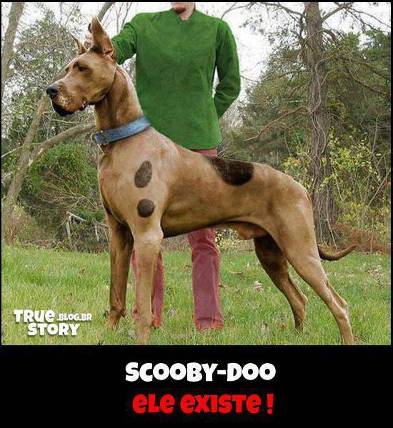 Scooby-Doo: Ele existe