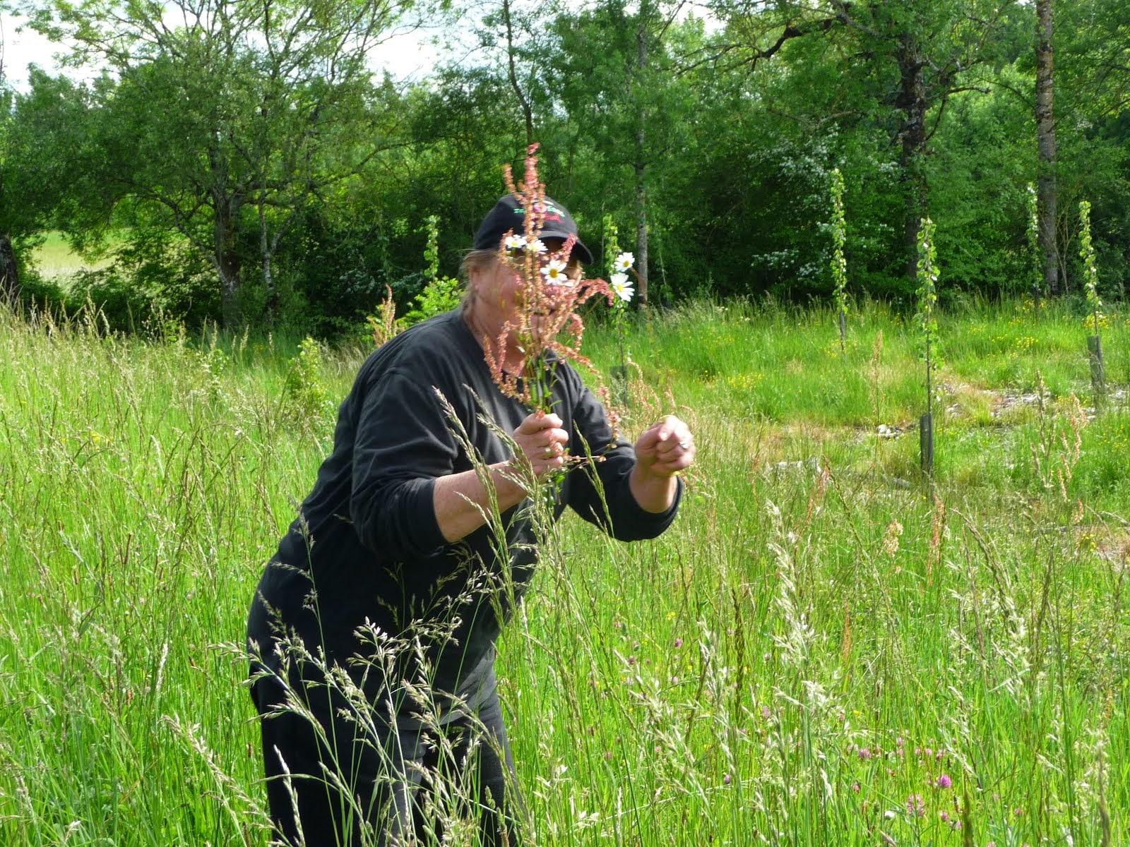 Val picking wildflowers