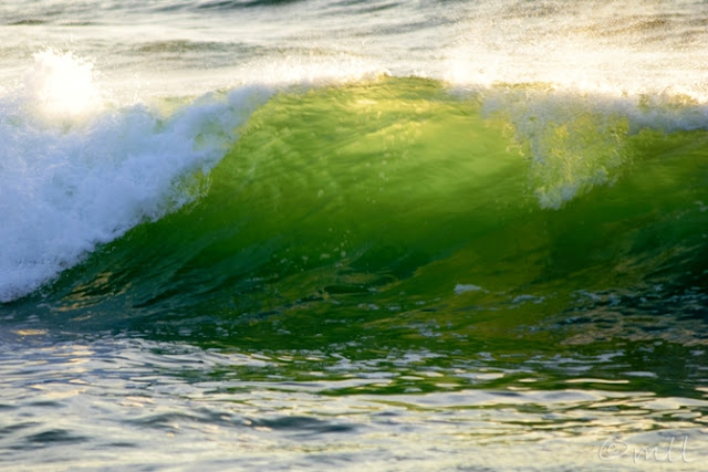 Green Beach Glass Wave