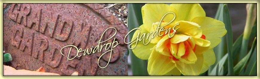 Dewdrop Gardens