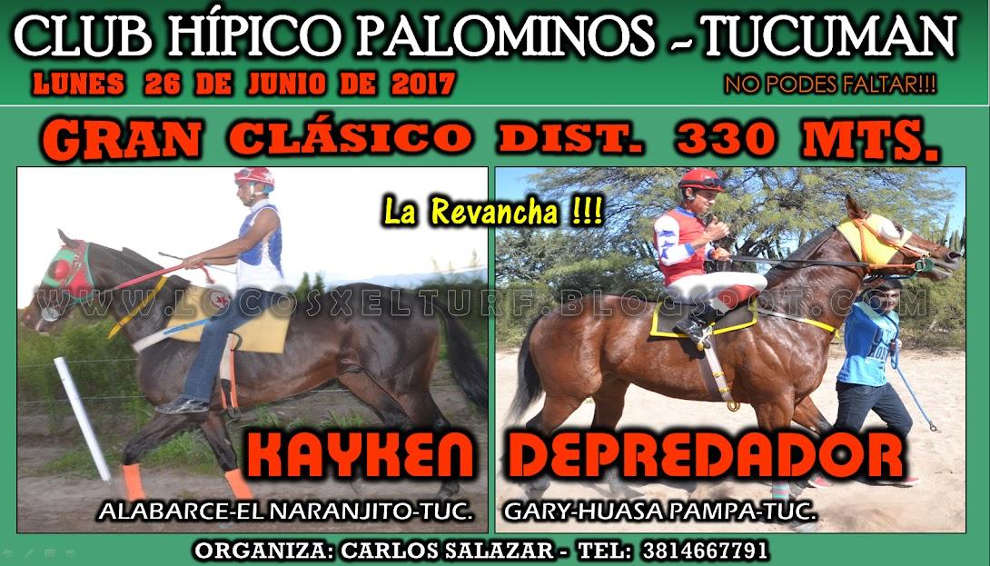 26-06-HIP. PALOMINOS-CLAS.