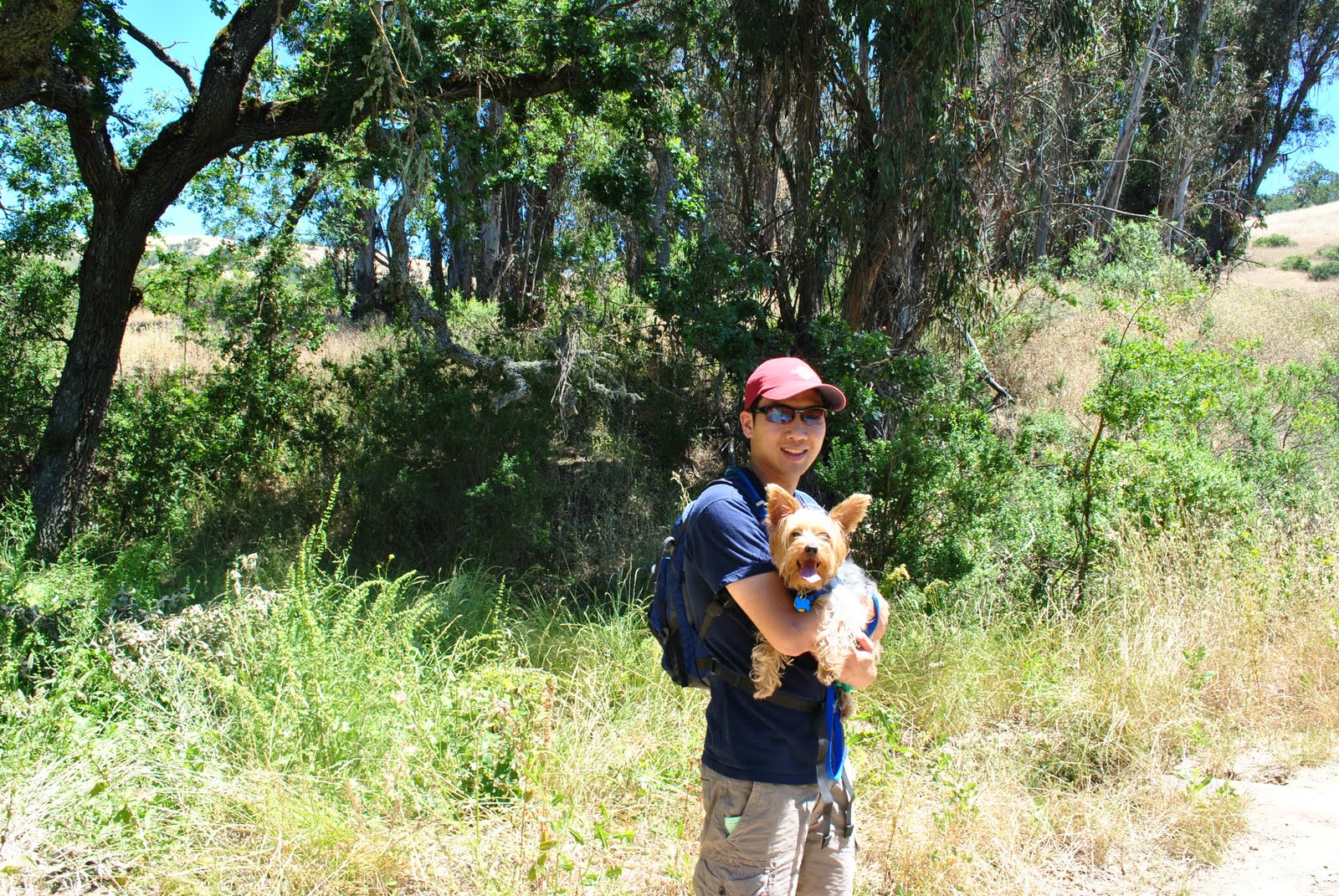 Joseph D Grant Park Dogs