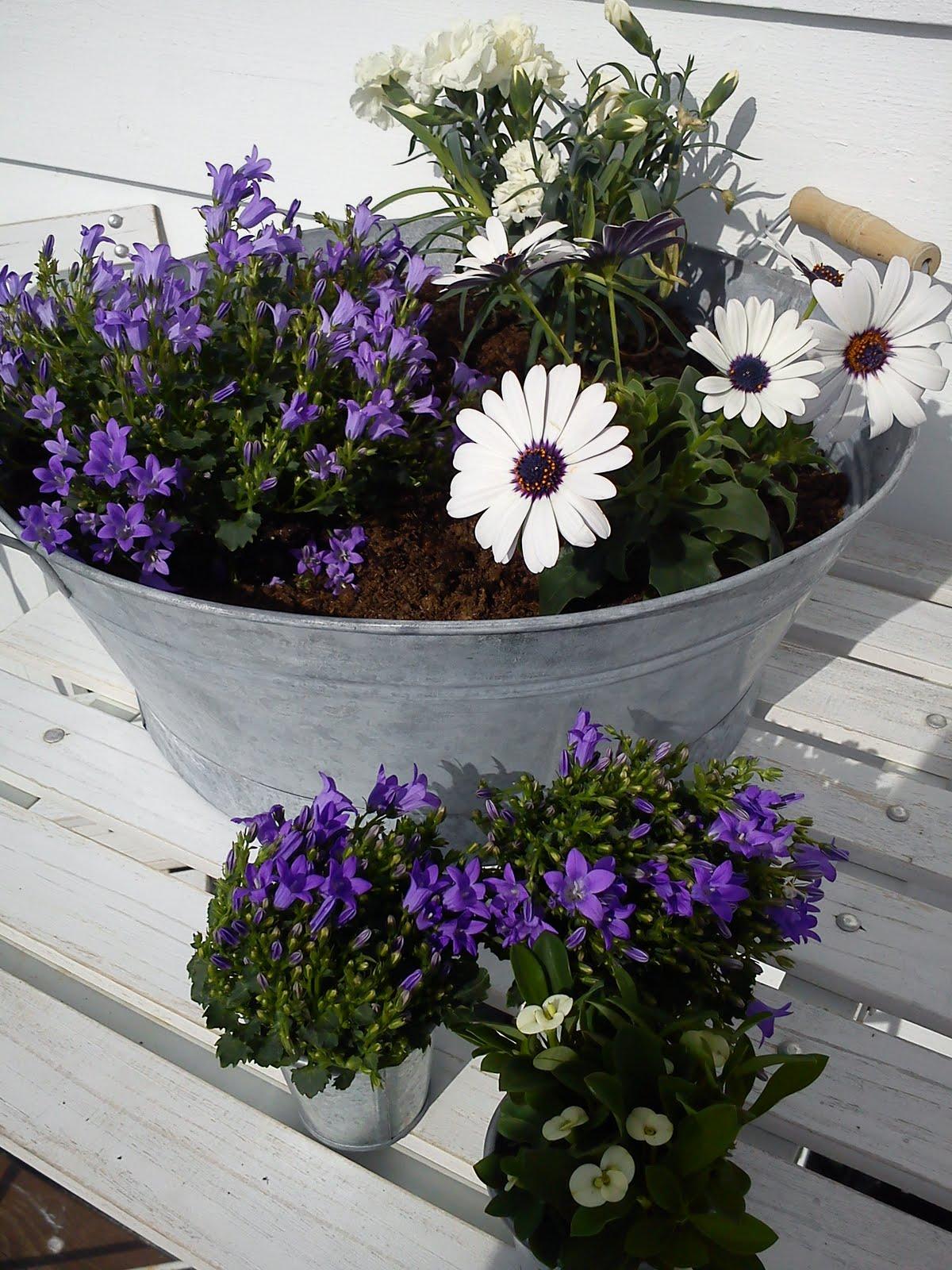 Sinkbalje til blomster
