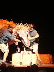 Erth's Dinosaurs, Greenville, SC