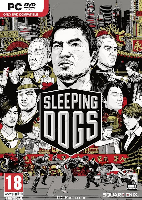Sleeping Dogs Limited Edition – REPACK
