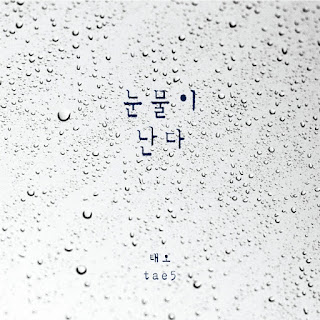 [Single] Tae5 – Tears Are Falling (MP3)