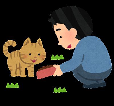 野良猫の餌付けのイラスト