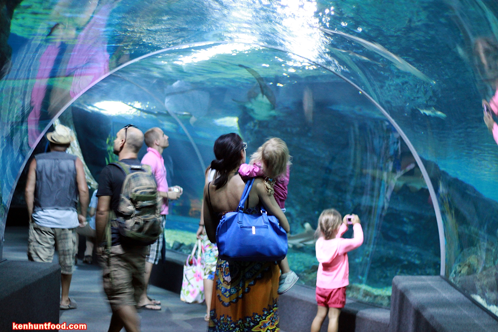 Ken Hunts Food Suggested Itinerary Bangkok Thailand Travel And Et Ticket Sea Life Ocean World Aquarium Only Adult Partake In A Fun Filled Family Activities At One Of The Largest Aquariums South East Asia Housed Within Iconic Siam