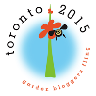 Toronto Fling 2015