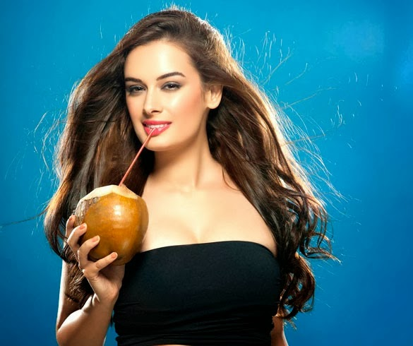 Evelyn+Sharma+Hd+Wallpapers+Free+Download012