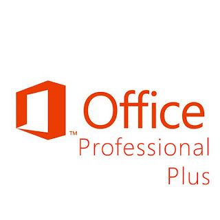 Microsoft Office Professional Plus 2013 (32 bit + 64 bit) + Activator