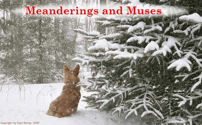 Meanderings and Muses