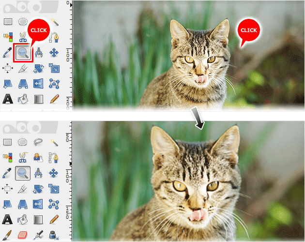 ズームツールを選んで画像ウィンドウをクリックして拡大表示