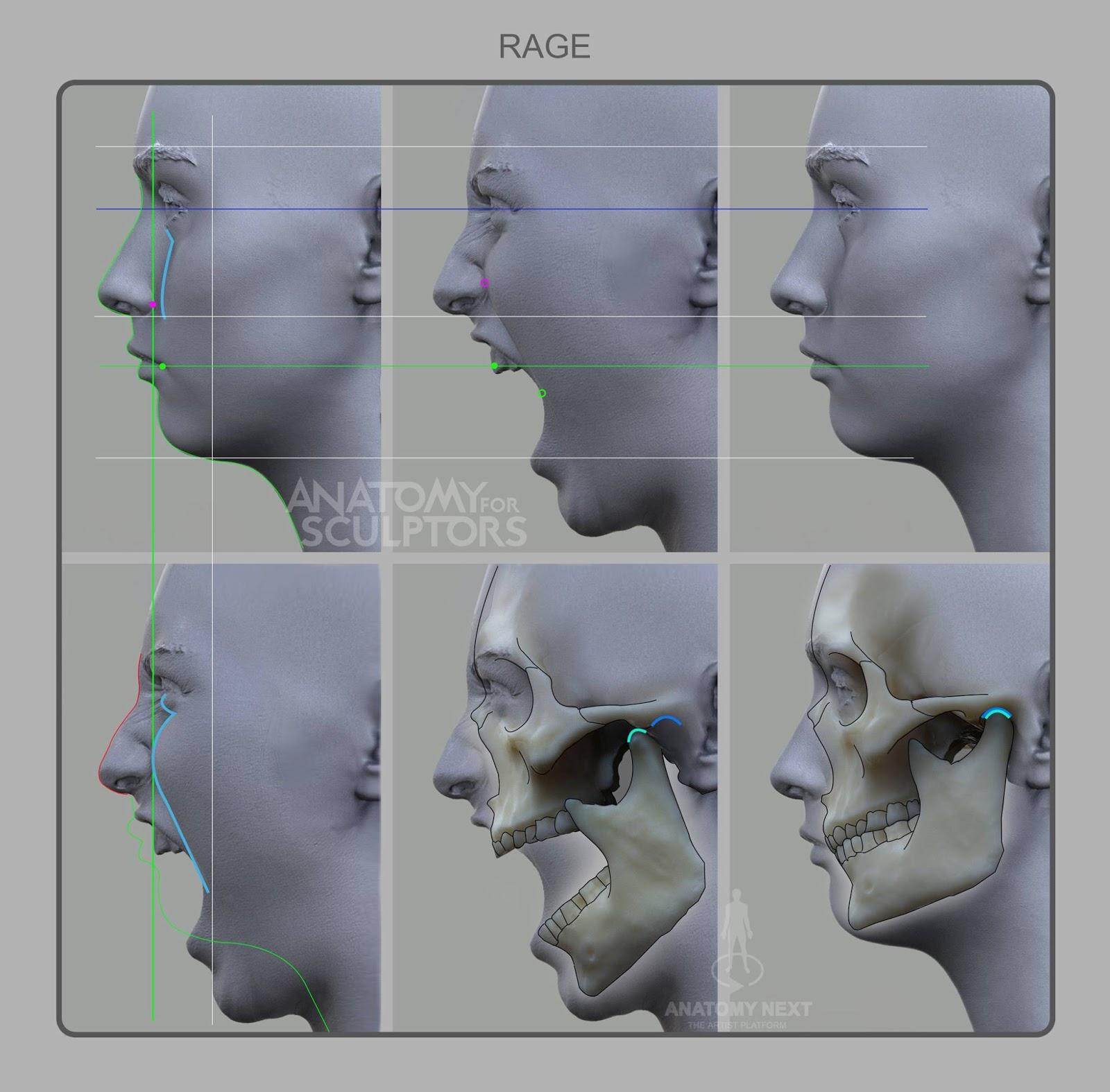 3D scanning for Anatomy Next build.   ANATOMY NEXT, the artist platform