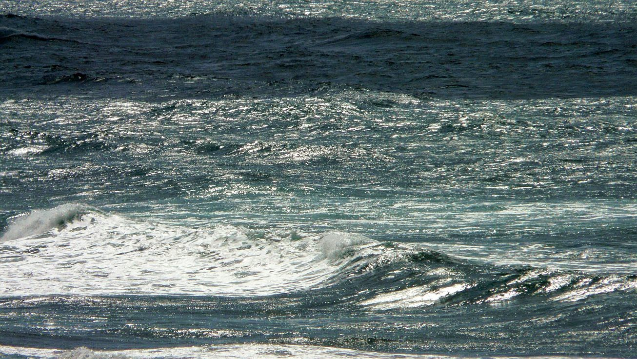 comprar tabla surf sopelana02