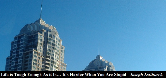 life is tough as it is it's harder when you are stupid
