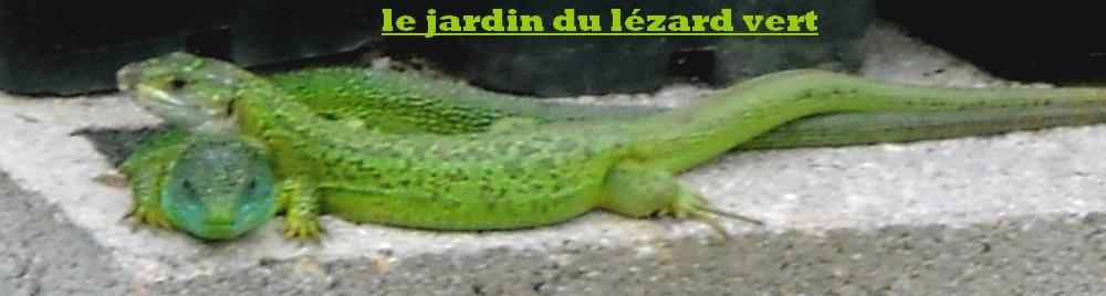 Le jardin du lézard vert