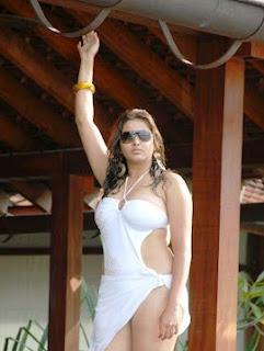 Namitha-hot-in-bikini-images-8