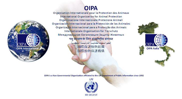 INTERNATIONAL ORGANIZATION FOR ANIMAL PROTECTION - OIPA INDIA