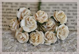 Roosjes - roses