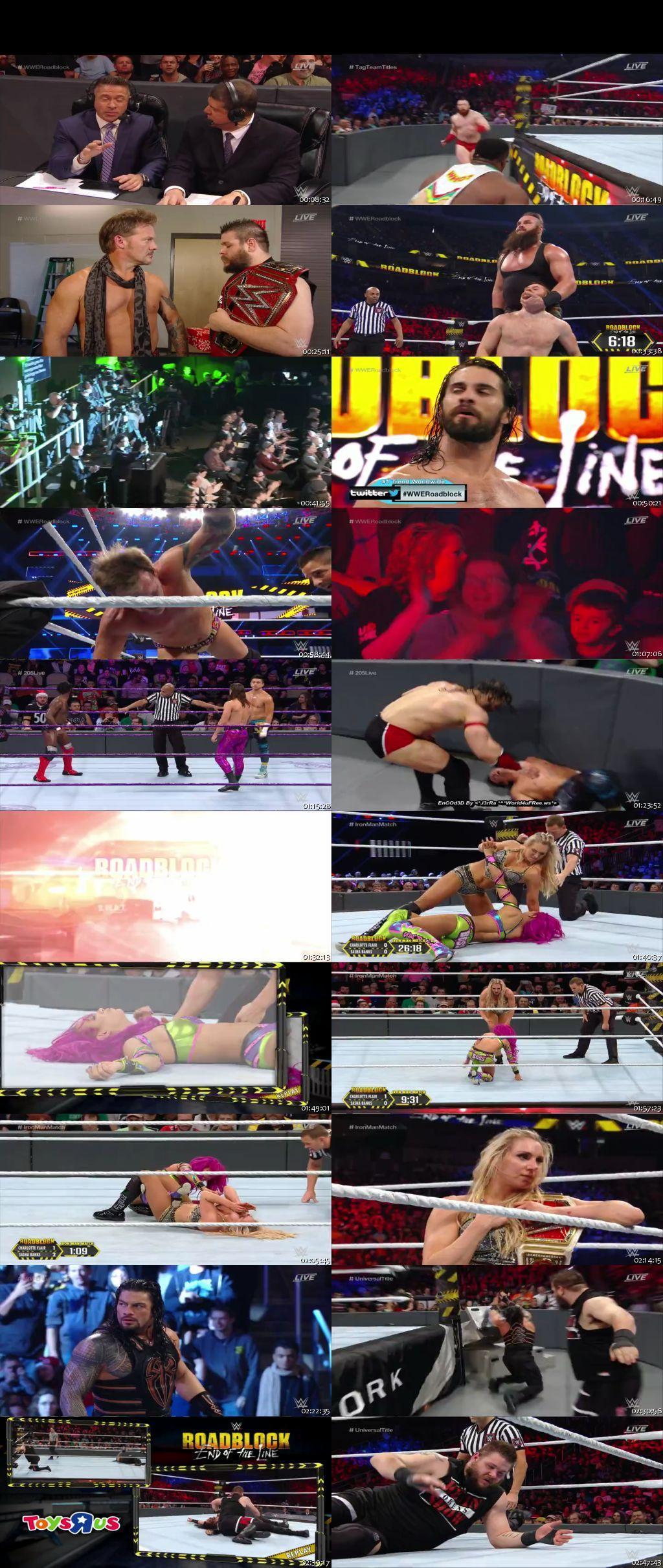 Screen Shot Of WWE Roadblock End Of The Line 2016 480P 300MB