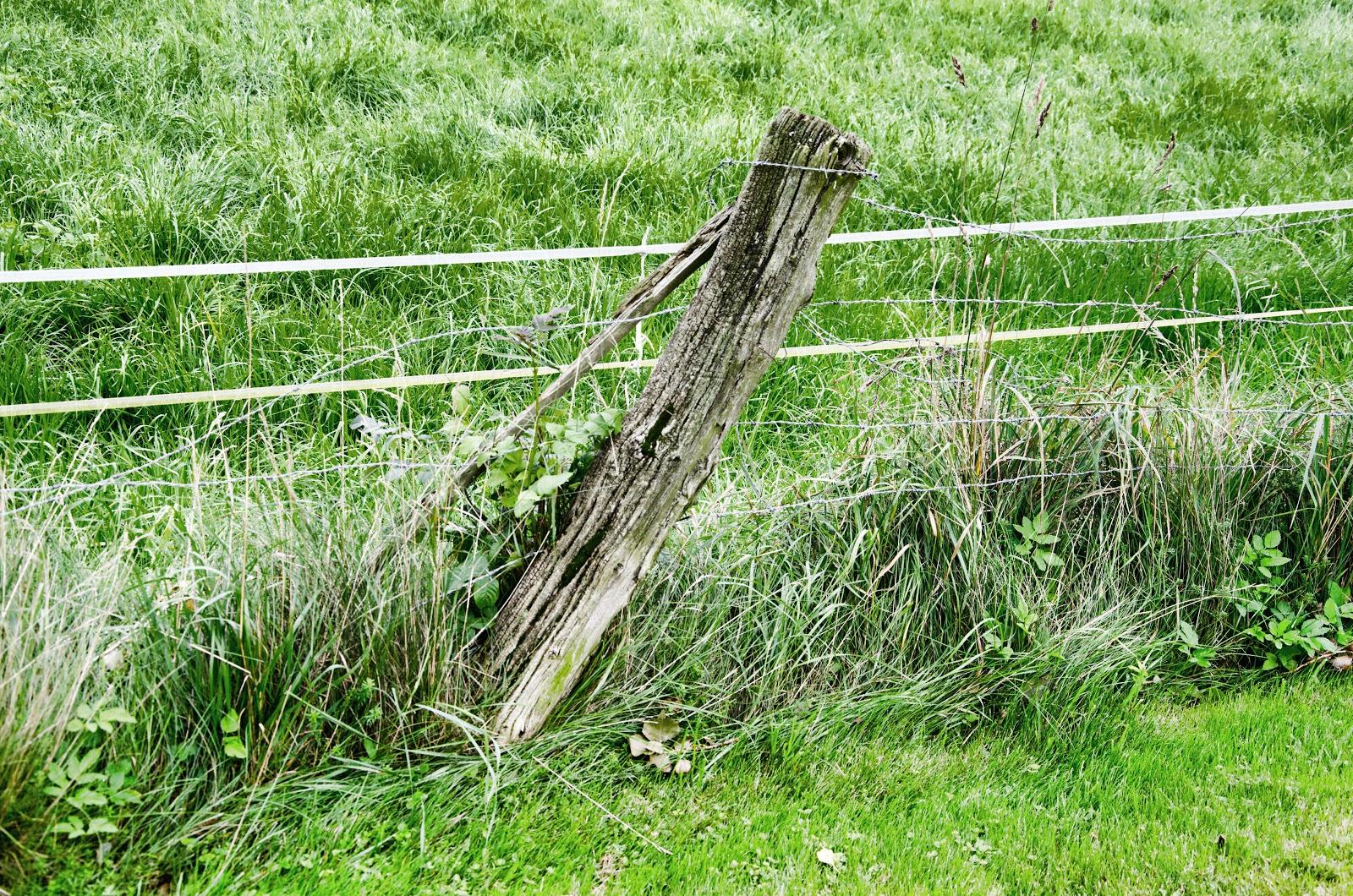 Holz Draht Zaun XE79 – Hitoiro