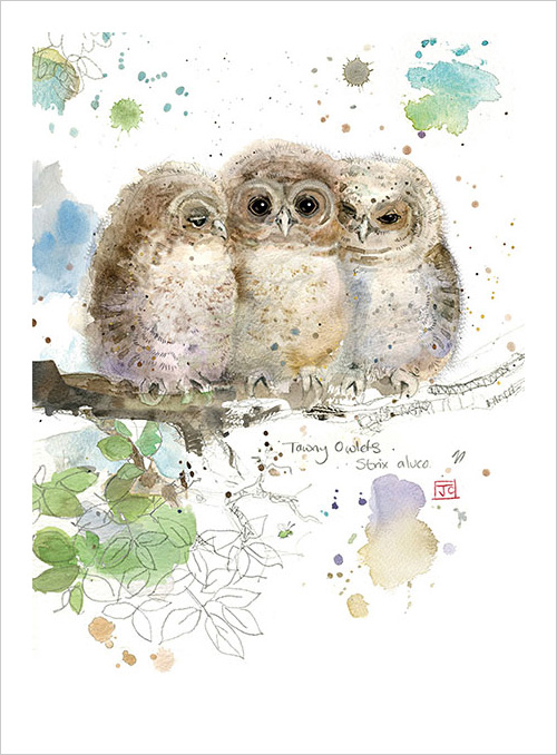 My Owl Barn Bug Art Greeting Cards By Jane Crowther