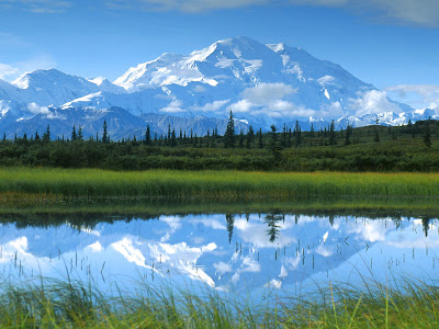 Denali National Park Alaska in U.S.A