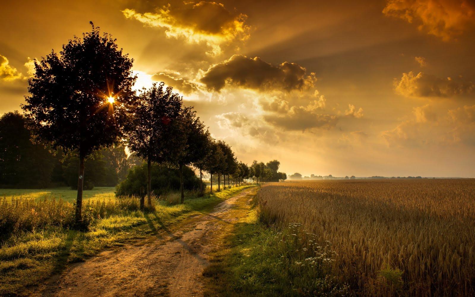 http://4.bp.blogspot.com/-yUSgQqmcyb4/UJHQZm8a0JI/AAAAAAABNpM/oBfyMxzkv4c/s1600/tributo-a-nuestros-paisajes-naturales-autumn-landscape-with-trees-1920x1200-wallpaper-.jpg