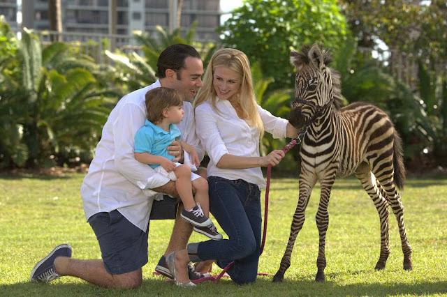 Jungle Island Miami