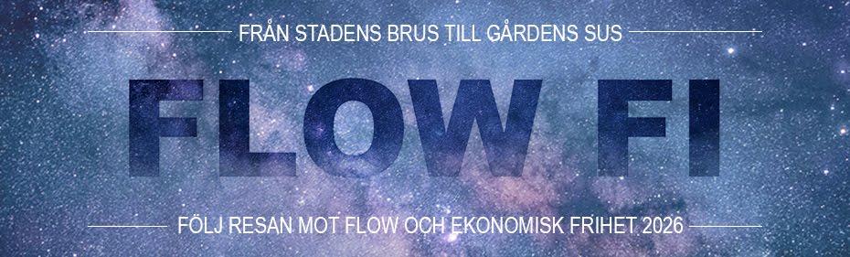 Flow FI