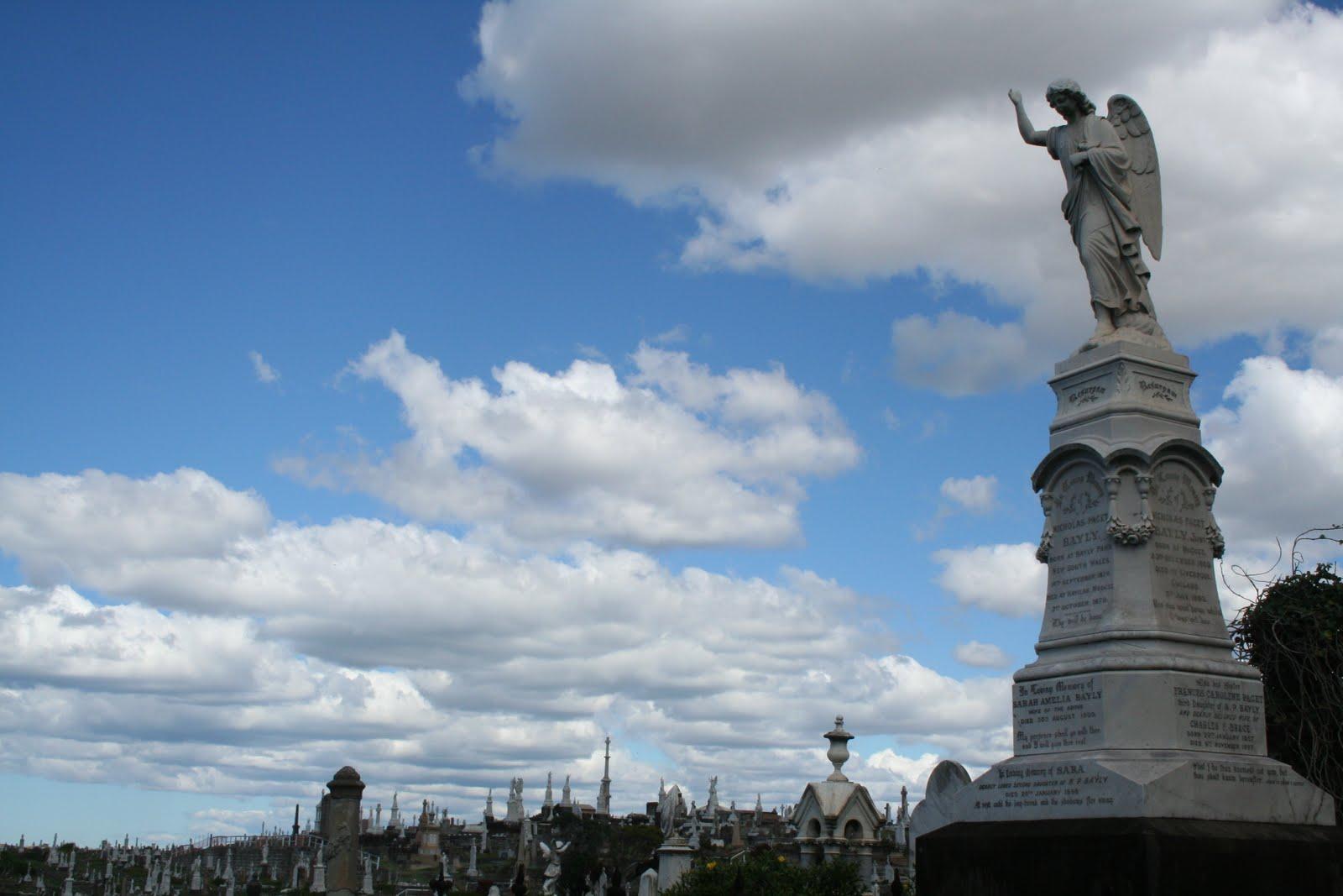 Dream australia quiero ser cangura cementerio de for Cementerio jardin del mar