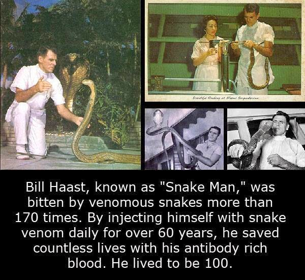 The Snake Man - Bill Haast