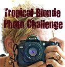 Photo Challenge button
