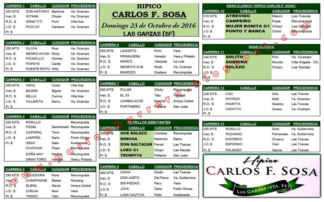 LAS GARZAS - 23 - PROGRAMA