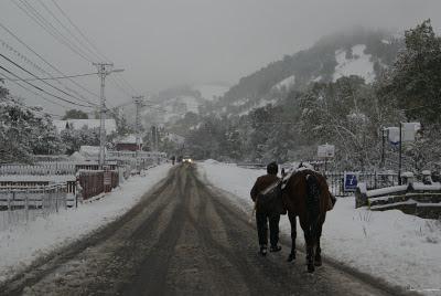 peisaj de iarna Bran Moeciu winter scene